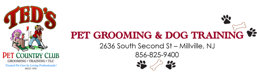 Teds Pet Country Club Pet Grooming And Dog Training In Millville